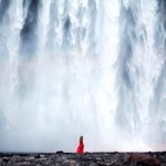 photo by elizabeth gadd